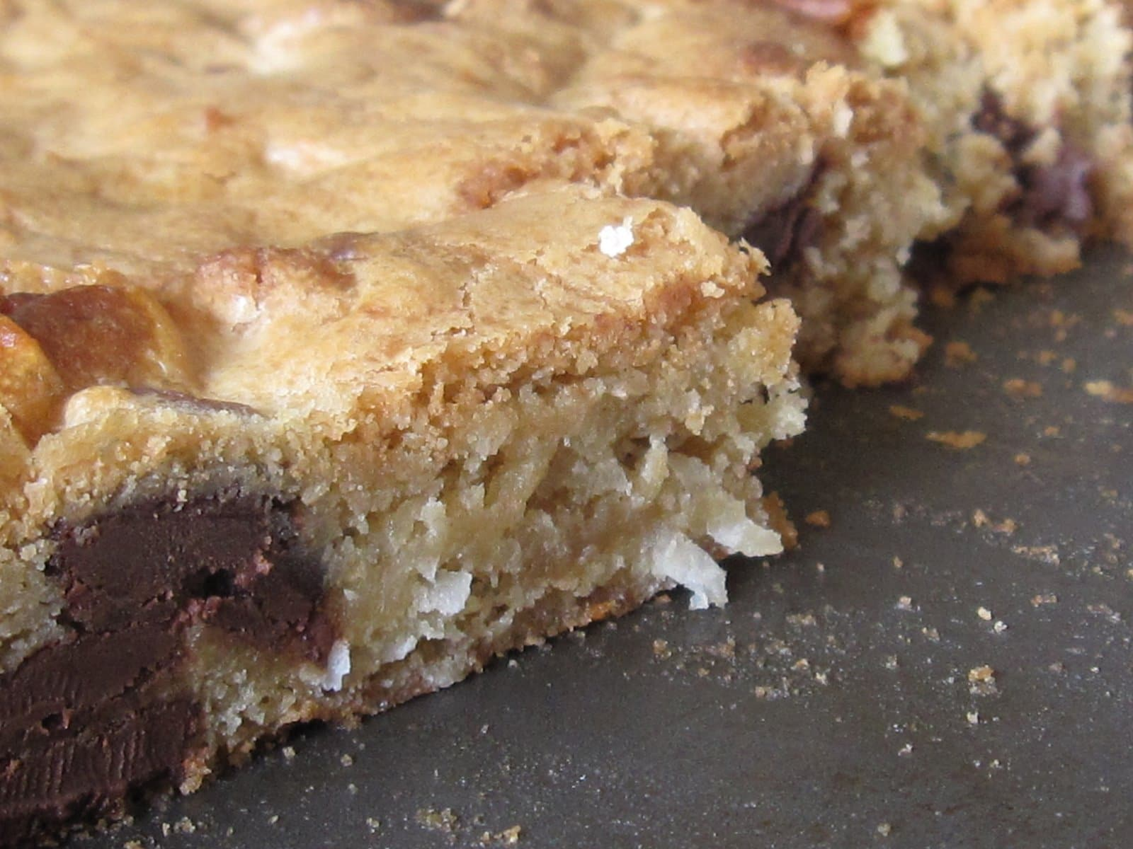 Close-up of a chocolate-chip blondie