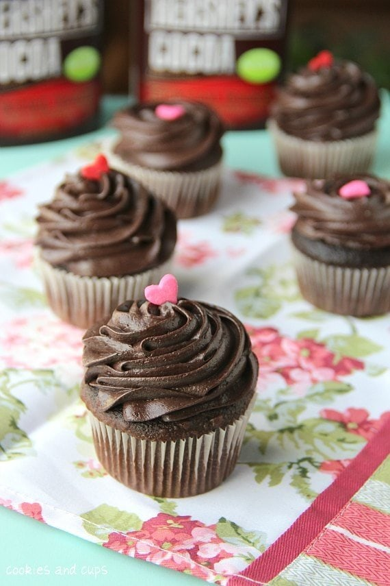 Chocolate cupcake recipe simple