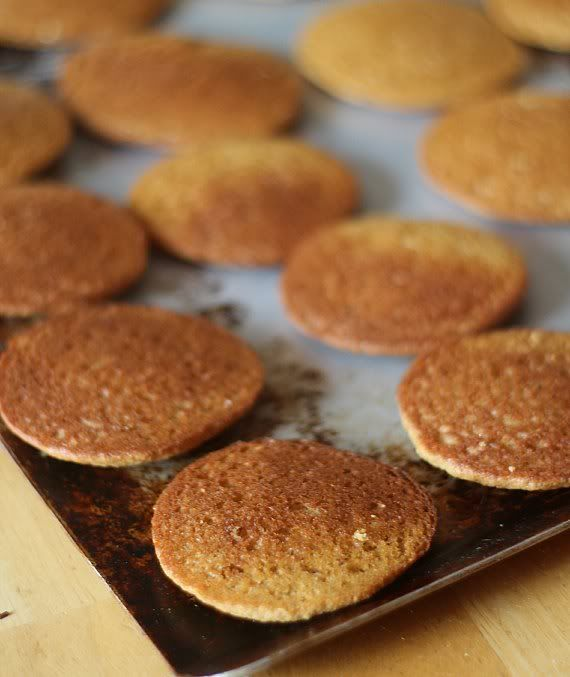 Graham cracker whoopie pie cakes on a baking sheet ready for filling