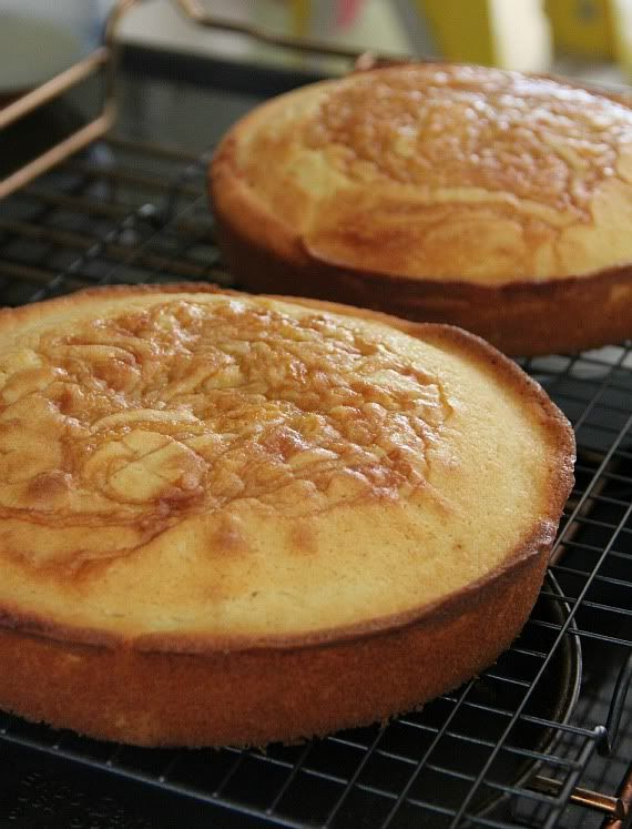 Two round vanilla caramel cakes on a cooling rack