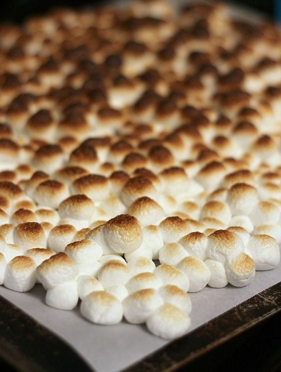 Toasted Marshmallows on Parchment Paper