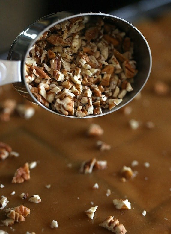 Pecans on Praline Crack