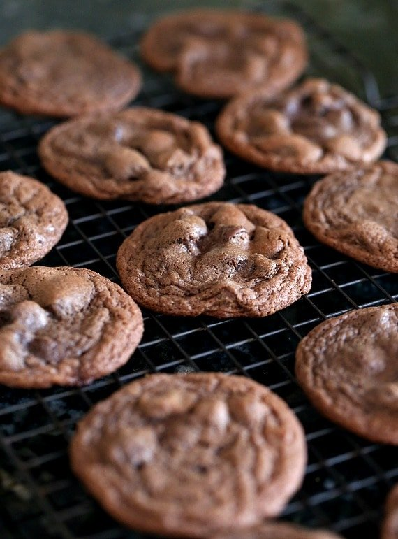 Chewy Chocolate Chocolate Chip Cookies