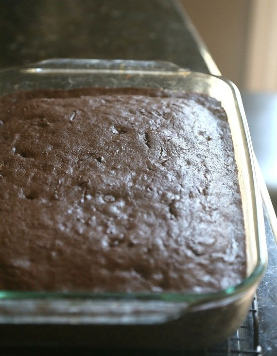 Baked Zucchini Cake before the frosting!