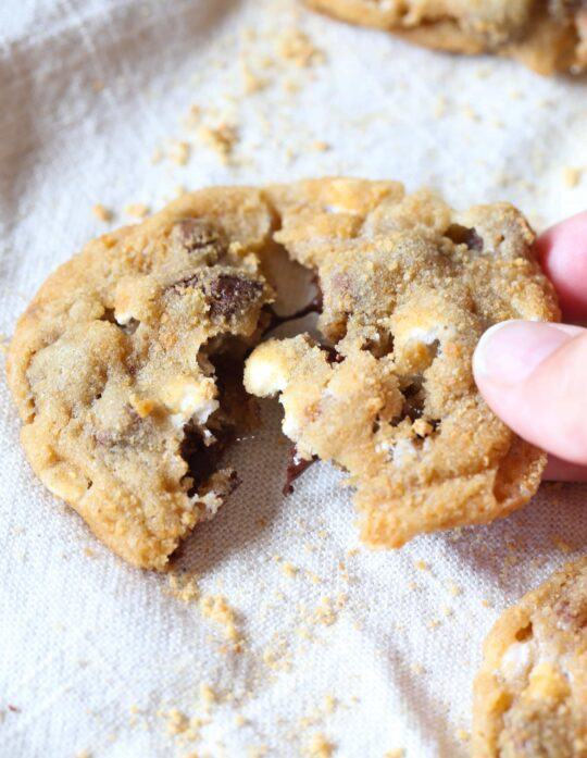 These chewy S'mores cookies are loaded with milk chocolate, mallow bits and coated in graham cracker crumbs making them
