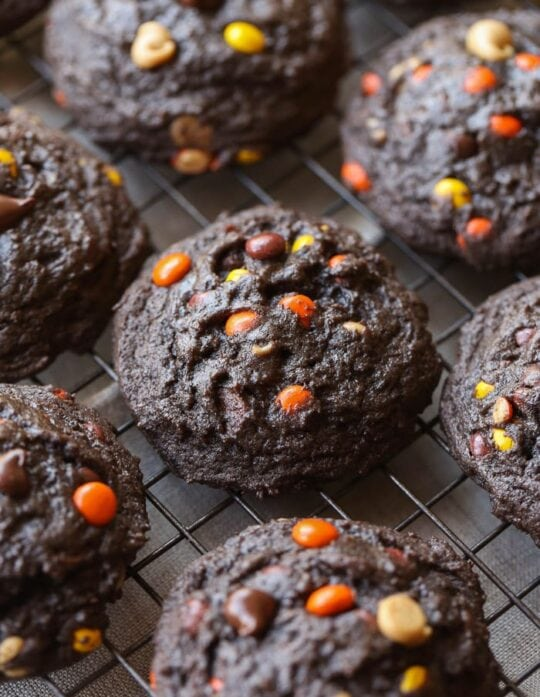 Thick almost brownie-like chocolate cookies loaded with peanut butter chips, Reese's Pieces and Chocolate Chips! Mix and match the add-ins!