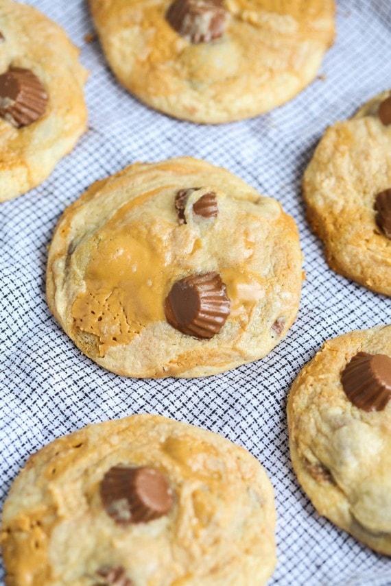 pbswirledcookies-11