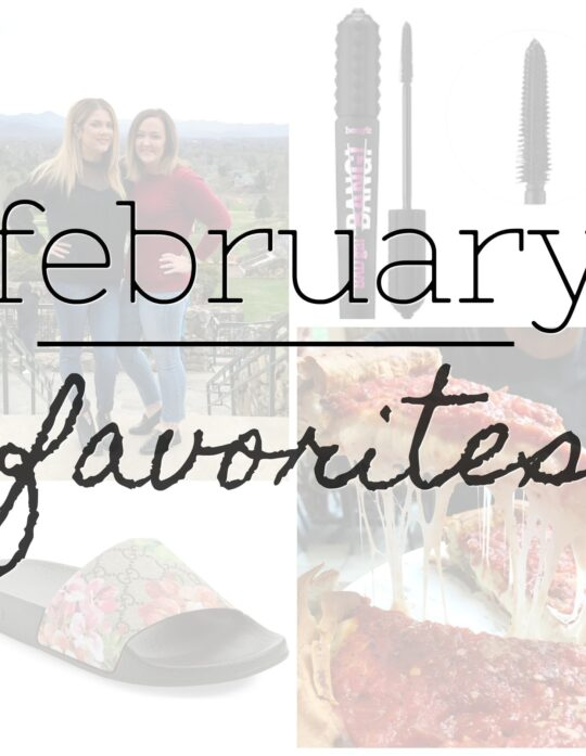 February Favorites - Cookies & Cups