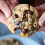 Malted Oatmeal Chocolate Chip Cookies