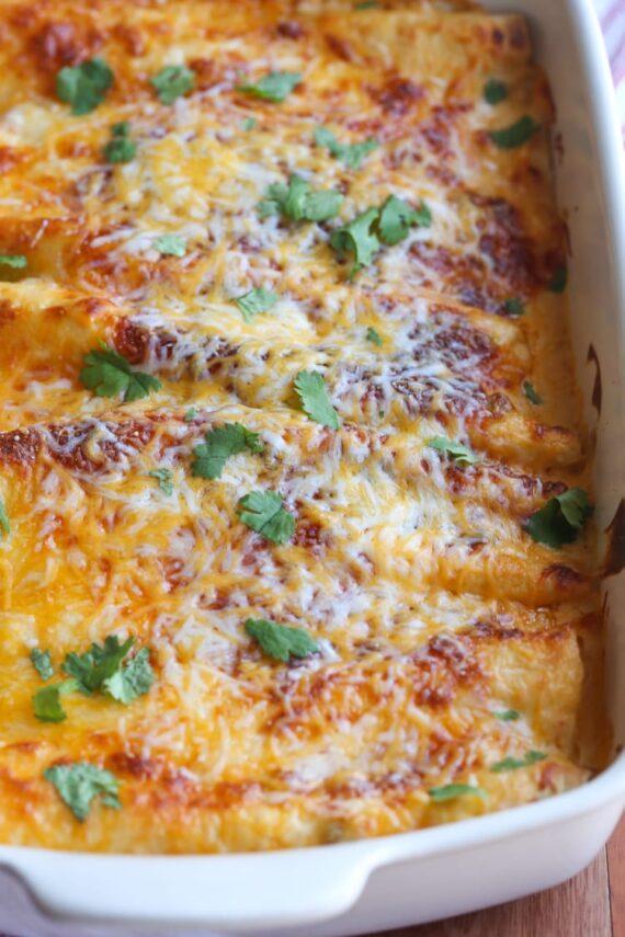 Sour Cream Chicken Enchiladas Baked in a 9x13 dish
