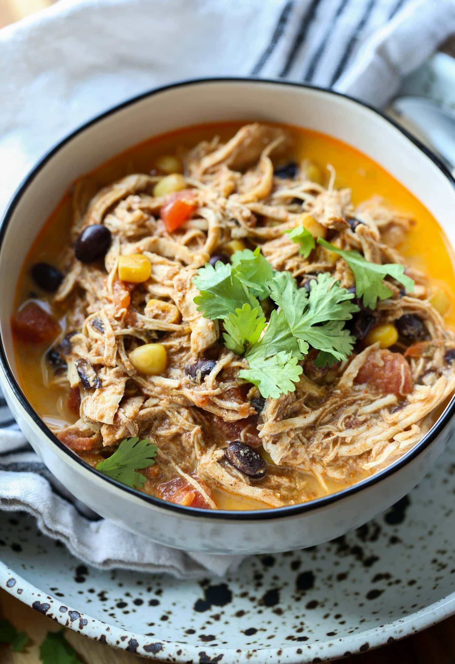 shredded chicken soup with cilantro